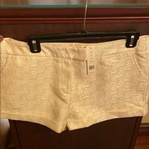 Romeo & Juliet Couture shorts